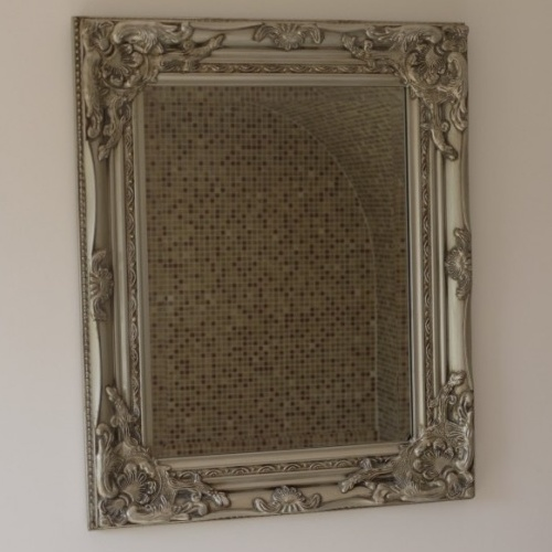 Small Silver Finish Antique Gilded Indoor Wall Mirror