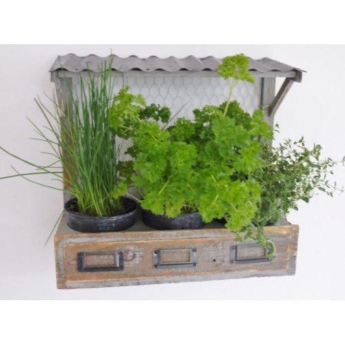 Shabby Chic Wall Or Window Herb Planter