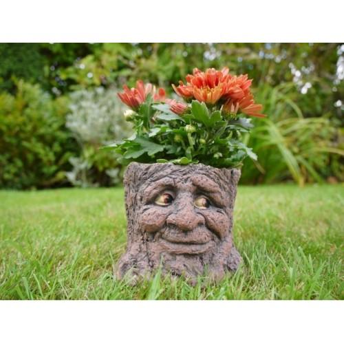 Novelty Tree Stump Face Carved Garden Planter